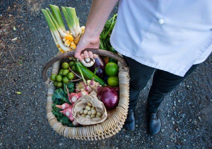 harvest festival  northern rivers food